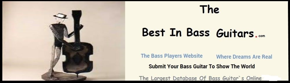 , Never Too Old To Play The Bass, Best In Bass Guitars .Com, Best In Bass Guitars .Com
