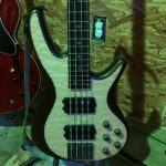 Mitchell F B 700 Bass Guitar